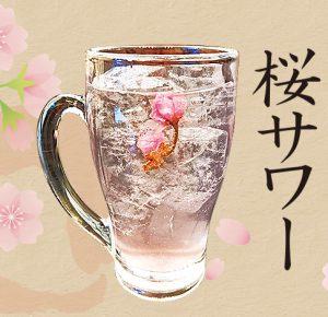 桜サワー|あおい鶏